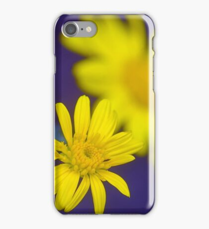 Yellow Spring Beauties iPhone Case/Skin