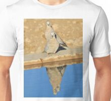 Cape Turtle Dove - Reflection of Blue - African Wildlife Unisex T-Shirt