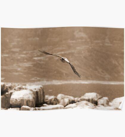 Lets Coast; Sepia Manhattan Beach, CA USA Lei Hedger Photography Poster