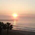 Lovin The Beach by trisha22