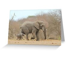 Elephant Love - Keeping up with Dad - African Wildlife Greeting Card