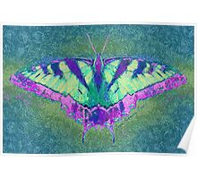 BUTTERFLY PLEASES WHEREVER IT GOES Poster