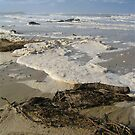Storm Washed Beach by Penny Smith