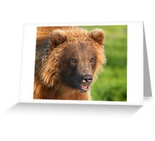 Blond Grizzly Bear Greeting Card
