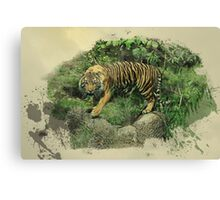Tiger Territory  Canvas Print