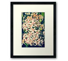 Backyard Bloomer Framed Print