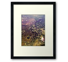 The Mighty Murray Winds its Way Framed Print