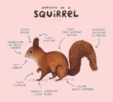 Anatomy of a Squirrel Baby Tee