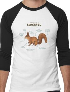 Anatomy of a Squirrel Men's Baseball ¾ T-Shirt
