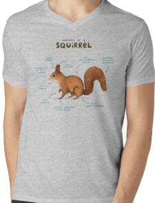 Anatomy of a Squirrel Mens V-Neck T-Shirt