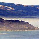 Big Sur California Central Coast by John Schneider