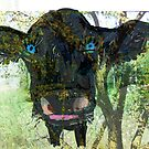 The Greeting Cow by Gabriele Maurus