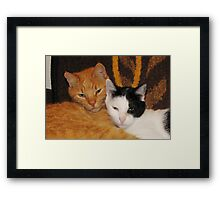 A Loving couple - pillow & tote Framed Print