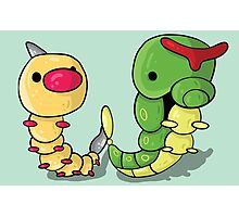 Weedle and Caterpie Photographic Print