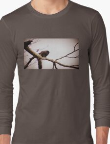 male red winged black bird in a tree Long Sleeve T-Shirt