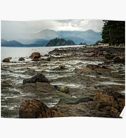 Beach at Skidigate Inlet Poster