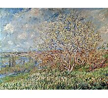 Claude Monet - Spring 1882  Photographic Print