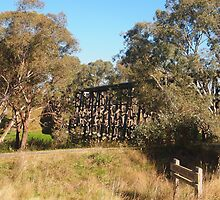The HistoricTrestle Bridge, Pyalong Vic Australia by Margaret Morgan (Watkins)