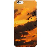Key West Florida Sunset with Bokeh Birds iPhone Case/Skin