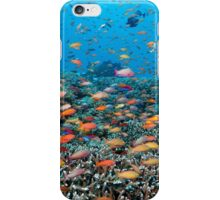 Rainbowed Sea iPhone Case/Skin