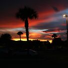 SABEL PALM PLAZA SUNSET by TomBaumker