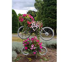Bicycles made for FOUR Photographic Print