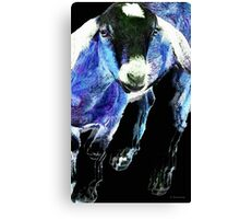 Goat Pop Art - Blue - Sharon Cummings Canvas Print