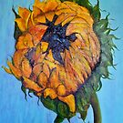 Sunflower Opening by Susan Duffey