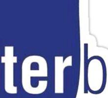 Waterboyz logo chris travis Sticker