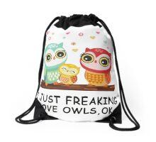 Owl love Drawstring Bag