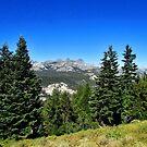 Eastern Sierras by marilyn diaz