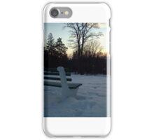 Late Winter Sunset iPhone Case/Skin