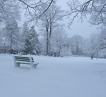 Bench in Winter by ahlasny