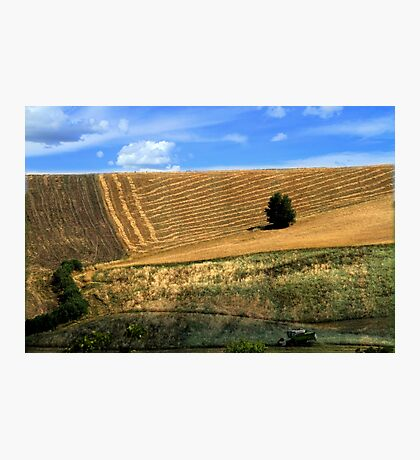Hills in the Marche Photographic Print