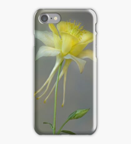 Aquilegia iPhone Case/Skin