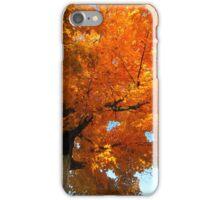 Autumn Colors (3) iPhone Case/Skin
