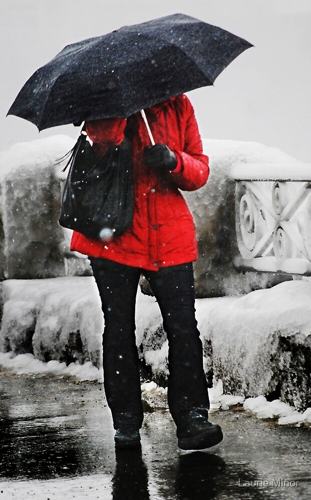 The Red Coat by Laurie Minor