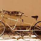 Our Bicycle Built For Two by Diane Arndt