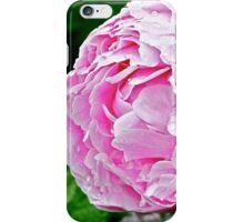In the Rose Garden (1) iPhone Case/Skin