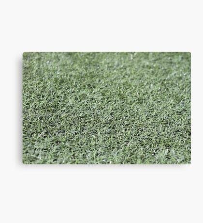 Grassy Goodness Canvas Print
