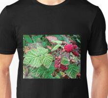 Raspberries Unisex T-Shirt