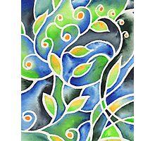 Whimsical Garden Organic Decor III Photographic Print