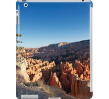 Lone tree overlook at Bryce Canyon National Park iPad Case/Skin
