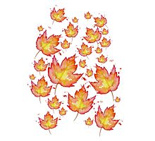 Autumn Leaves / Fall Leaf - Watercolor Painting - Tshirts + More! Halloween Jonny2may / J2Art Photographic Print