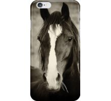 Just Like Black Beauty! iPhone Case/Skin