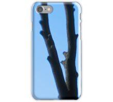 Triad iPhone Case/Skin