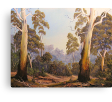 The Scent Of Gumtrees In Australia Canvas Print
