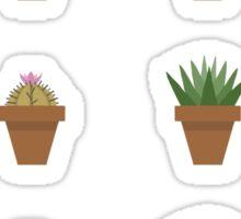 Succulent Line up No.1 Sticker