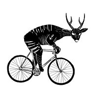 Deer & Bicycle Photographic Print