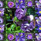 Floral Collage with Blue and Purple Flowers by VoxCeleste